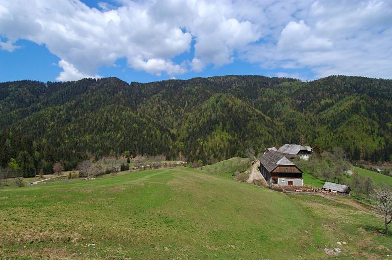 Kmetija Osonjik - konjereja