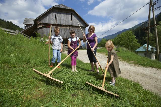 učna kmetija